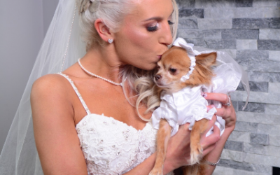 Advice for Photographing Pets at Your Long Island Wedding